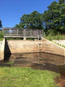 dam safety design1