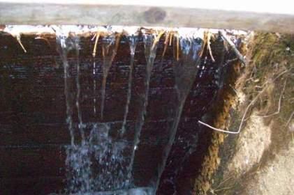 dam safety design2